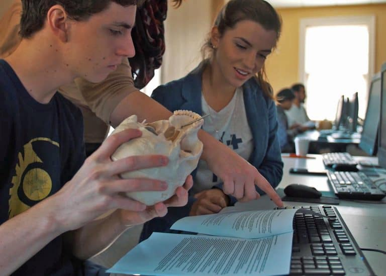 Study Anthropology at WPU
