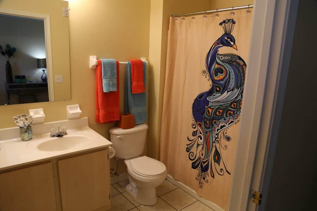 Bathroom in WPU off-campus housing, The Vie.