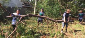 WPU Students volunteer to clear fallen trees after Hurricane.