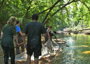 WPU students and professors research pollution in Crabtree Creek